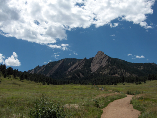 Boulder Background Check