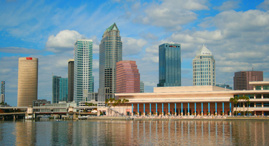 Tampa Background Check
