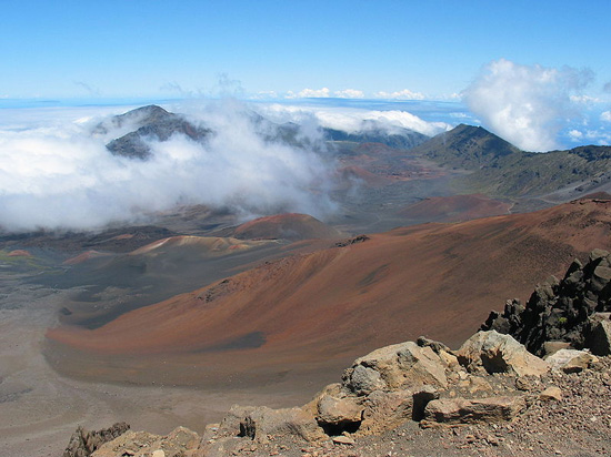 Maui Background Check